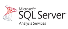 Microsoft SQL Server Analysis Services (SSAS)